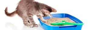Цены на Туалеты и наполнители для кошек, фото