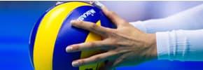 Цены на Все для волейбола, фото