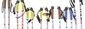 Цены на Палки для лыж, фото