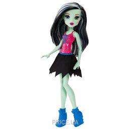Mattel Monster High Упырьлидерша (в ассорт.) (DNV65)