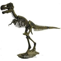 Фото Dino Horizons Скелет Тираннозавра (D501)