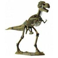 Фото Dino Horizons Скелет динозавра - Тираннозавр (D501)