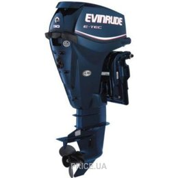 Evinrude E 30 DTEL