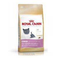 Фото Royal Canin British Shorthair Kitten 2 кг