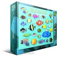 Фото EuroGraphics Тропические рыбы (6000-1173)