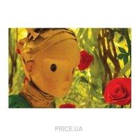 Фото Hape Пустыня и розы серии Маленький Принц (824781)