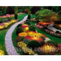Фото Оформление цветников Оформление цветочных клумб и