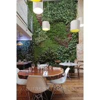 Фото Вертикальное озеленение офисных помещений Полный к