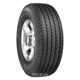 Фото Michelin CROSS TERRAIN SUV (265/65R17 112S)