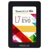 TEAM L7 Evo 60GB (T253L7060GTC101)